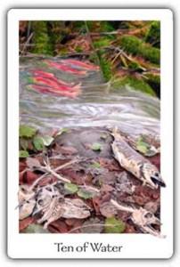 Gaian Tarot Ten of Water