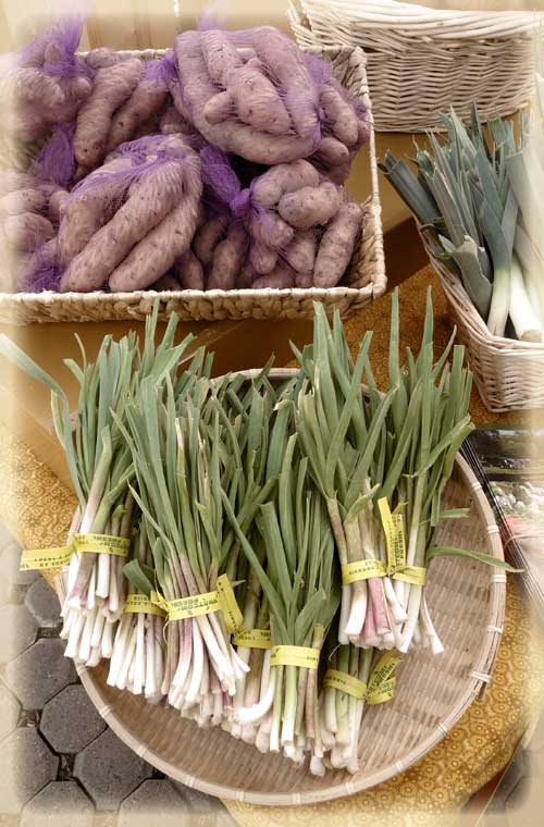 Spring at the Farmers Market