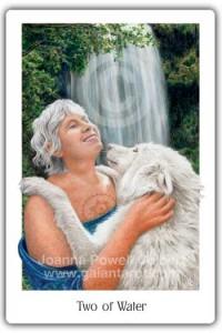 Gaian Tarot Two of Water