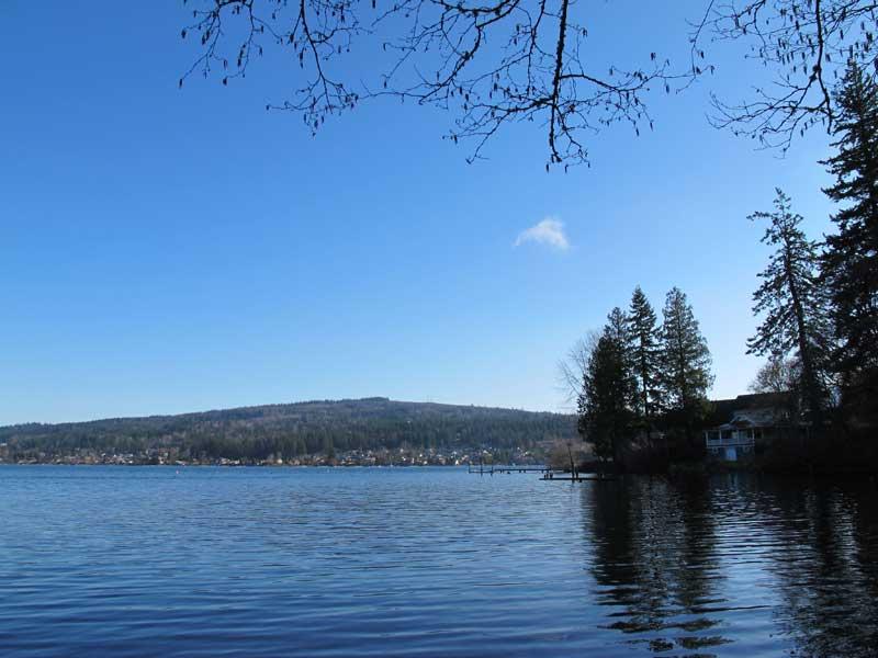 Morning walk at the lake