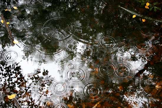 pool and raindrops
