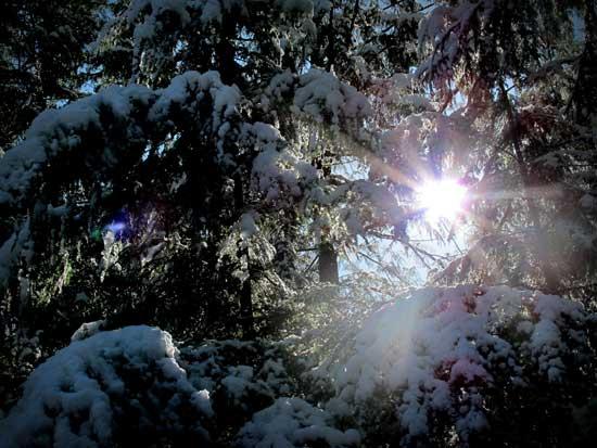 snow, sun 2012