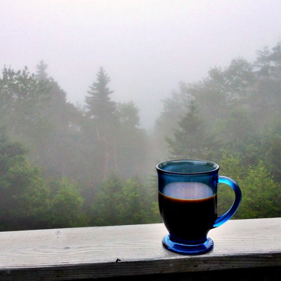 Fog & coffee