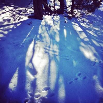 snow-santafe
