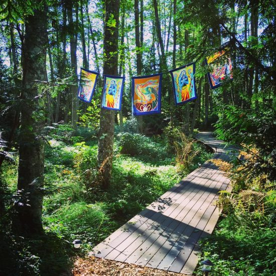 Prayer flags and the serpentine path through the marsh.