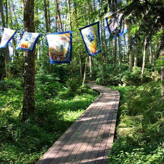 aldermarsh-path