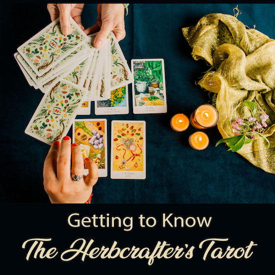 Get to Know the Herbcrafter's Tarot