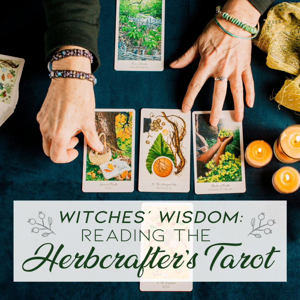 Herbcrafter's Tarot self-study course