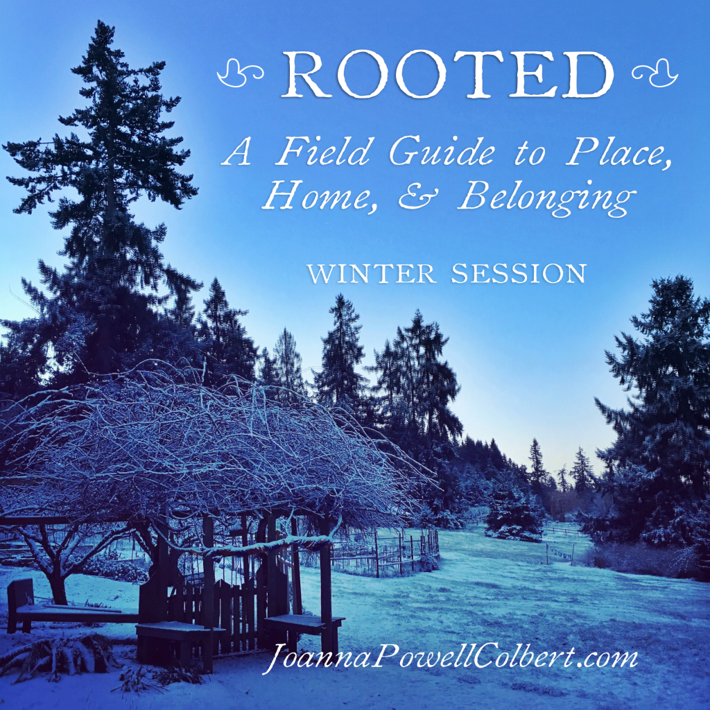 Rooted: A Field Guide to Place, Home, & Belonging
