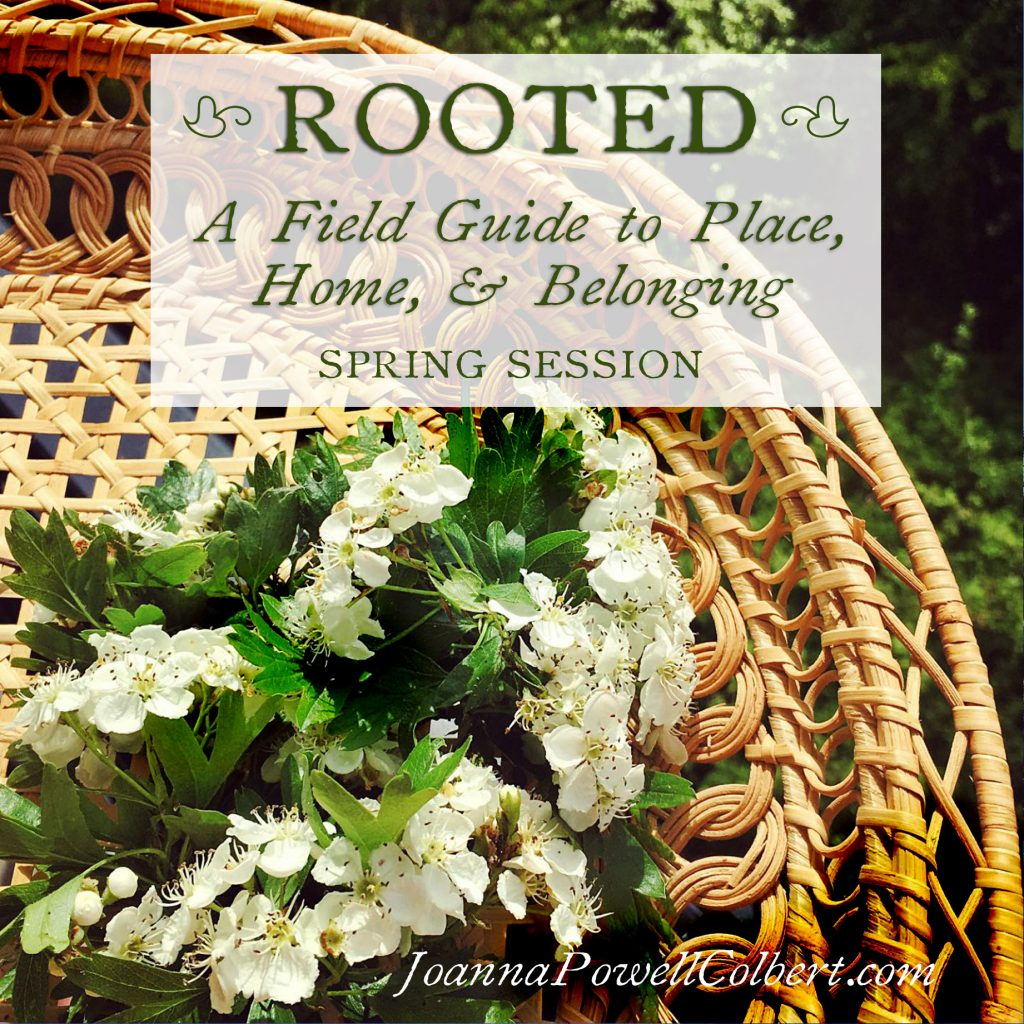Rooted - Spring Session